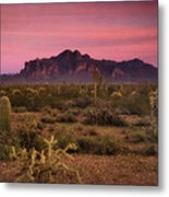Paint It Pink Sunset  Metal Print