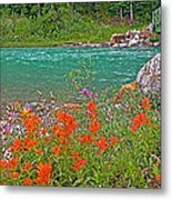 Paintbrush By Bow River In Banff Np-ab Metal Print