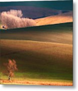 Painted By The Light Metal Print