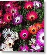 Painted Flowers Metal Print