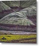 Painted Hills Bloom Metal Print