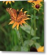 Painted Lady With Friends Metal Print