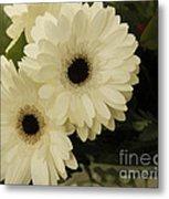 Painted White Flowers Metal Print