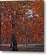 Painterly Style Autumn Trees Metal Print