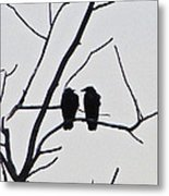 Pair Of Birds In Black Metal Print