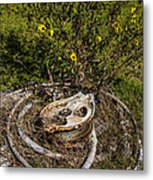 Palacios Texas Pulley Wire And Flowers Metal Print