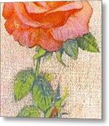 Pale Rose Metal Print