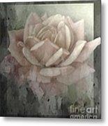Pale Rose Photoart Metal Print by Debbie Portwood