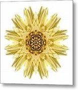 Pale Yellow Gerbera Daisy I Flower Mandala White Metal Print