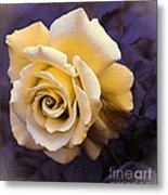 Pale Yellow Rose Metal Print