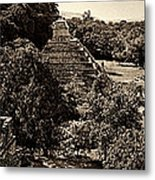 Palenque From The Jungle Panorama Sepia Metal Print