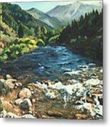 Palisades Creek  Metal Print