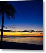 Palm After The Sun Is Gone Metal Print