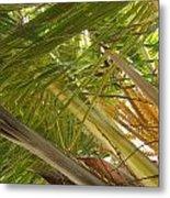 Palm Blossoms Metal Print