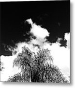 Palm Cloud  Metal Print