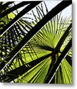 La Palm 3  Metal Print