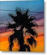 Palm In The Sunset Metal Print