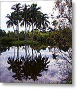Palm Island I Metal Print