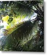 Palm Pattern 1 Metal Print