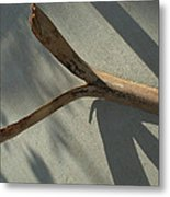 Palm Shadows Metal Print