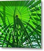 Palm Shadows Metal Print