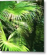 Palm Tree 8 Metal Print