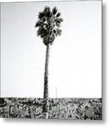 Palm Tree And Graffiti Metal Print