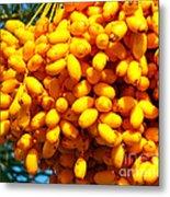 Palm Tree Fruit 2 Metal Print