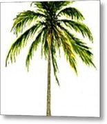 Palm Tree Number 2 Metal Print