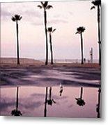 Palm Tree Reflections Metal Print