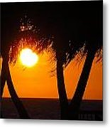 Palm Tree Silhouette At Sunset Metal Print