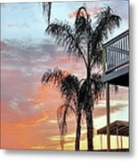 Palm Tree Sunrise  In New England Metal Print