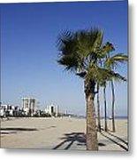 Palm Trees At Long Beach California Metal Print