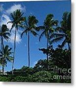 Palm Trees In Hawaii Metal Print