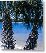 Palm Trees Of Gulf Breeze Metal Print