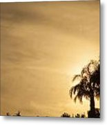 Palm Trees Sunset Over At Sea Of Galilee Metal Print