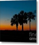 Palms At Clear Dawn Metal Print