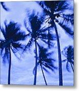 Palms In Storm Wind-bora Bora Tahiti Metal Print