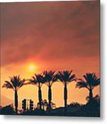 Palms On Fire Metal Print by Laurie Search