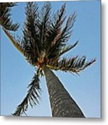 Palms Over My Head Metal Print