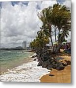 Palms Trees Along Luquillo Beach Metal Print