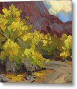 Palo Verde Trees Metal Print
