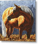 Palomino Horse - Variation Metal Print by Crista Forest