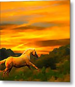 Palomino Pal At Sundown Metal Print