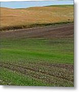 Palouse Patchwork 3 Metal Print