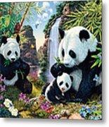 Panda Valley Metal Print