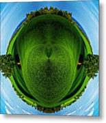 Panorama Earth Of A Green Meadow And Blue Sky Metal Print