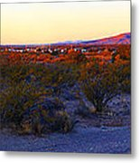 Panorama Morning View Of Mountains Metal Print