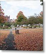 Panorama Of Taylor Park St Albans Vermont Metal Print