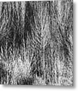 Panorama Winter Trees B And W Metal Print